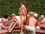 Back Yard Orgy