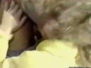blondi bee