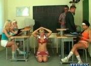 Teacher\'s Pets