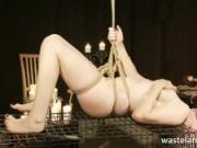 Short Blonde Haired Babe Bound On A Cage Giving Blowjob