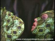 Pornstar in snake spandex dress
