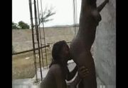 Haitian Booty 10