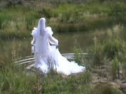 organza wed gown swim