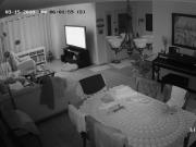 Brother in law caught on home security cam