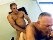 Horny Daddies Barebacking