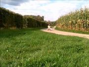 naked walk in the fields