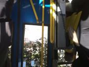 rabuda de jenas preto no bus