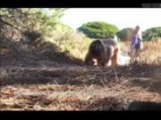 j expose ma chatte dans les dunes