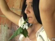 Punishment with nettles
