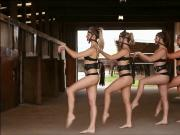 Ponygirl Dance