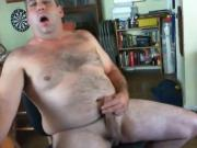 Daddy bear 15717