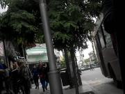 IMPERDIBLE TERRIBLE OJETE EN CALZA GRIS PENDEJA HERMOSA
