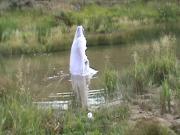 wedding dress stroke