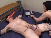 cock elctro torture
