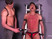 DreamBoyBondage Gay Bondage BDSM Twink Whipping Spanking