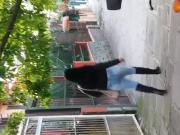 cavala desfilando na rua
