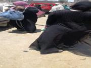 big ass hijab