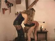 caning funny 8