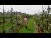Sexy UK MILF walks naked through an orchard