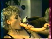 Summer Reflex 1984