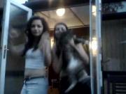 18+ teen sisters sexy dance on webcam