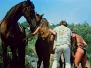 Kesse Kurven und Kanaillen 1980