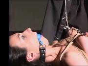 Slave tied, cropped, clamped, and vibed to cum