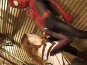 Spiderman + Spiderwoman fucking