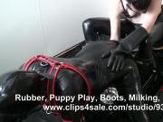rubber slave gimp dog miling and cum eating
