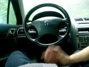 Car blowjo