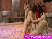 All wam all girl mud wrestling fight becomes very messy