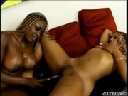 Coco Pink and Yexes Devine In A Hot Lesbian Scene - Foxy Bla
