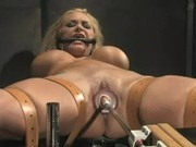 Shyla Stylez Perfect Slave