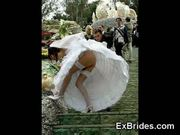 Real exhibitionist brides!