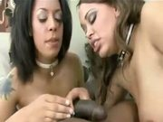 Jasmine cashmere and mone devine attack dick like animals!!