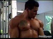Muscle gauge 2