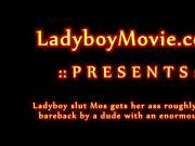 Ladyboy Mos Fucked Bareback