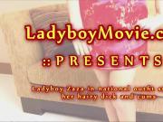 Ladyboy Zaza Strokes Her Dick