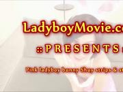 Ladyboy Bunny Shuy Strokes and Cums