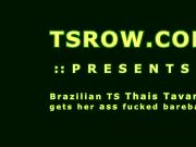 Brazilian Shemale Thais Tavares Bareback