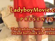 Thai Shemale Natty Fucked Bareback