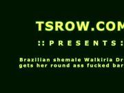 Shemale Walkiria Drumond Bareback Action