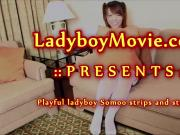 Tiny Ladyboy Somoo Jerking Off