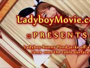 Ladyboy Bunny Pond Masturbating