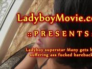 Ladyboy Many Punished Bareback