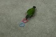 Crazy Parrot