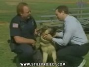 dog bites guy in the face