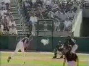 Dove Vs. Baseball Pitch