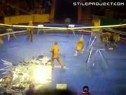 lions attack trainer at L'viv Circus in Ukraine