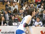 Japanese women's volleyball ass